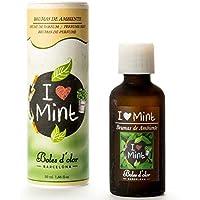 I Love menta–EDP eléctrico aroma Mist difusor fragancia aceite 50ml