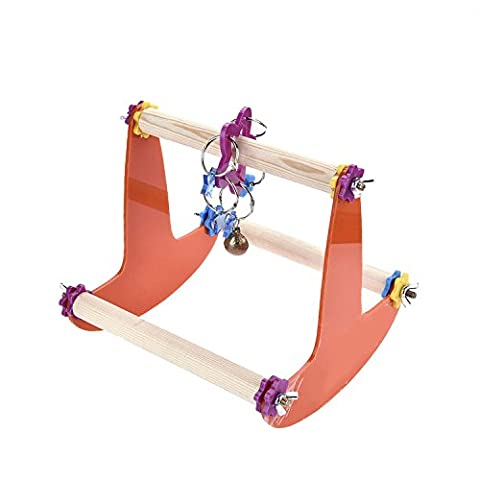 Zaote Funny Bird support jouet Perroquet Ara perruches Table d