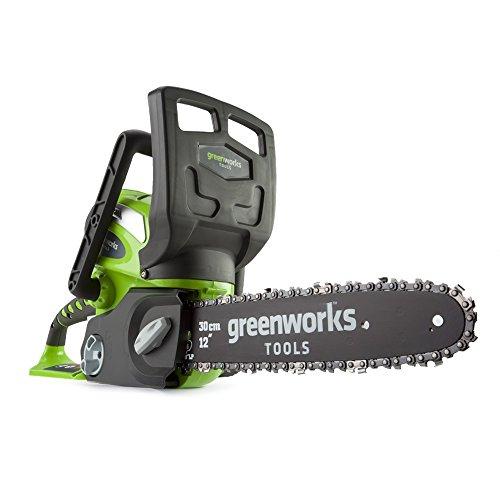 Greenworks Motosierra inalámbrica de 30cm y 40V Li-Ion con batería de 2Ah...