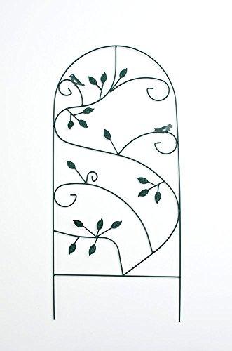 Clp supporto per piante rampicanti da esterno prato – tutore ad arco per rose e rampicanti in metallo pieno i arco da esterno per giardino in stile rustico i arco decorativo 110 x 50 cm verde