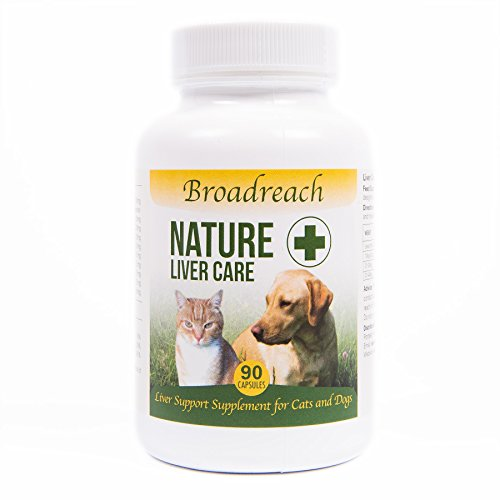 liver-care-and-dettox-supplement-for-dogs-and-cats-with-a-range-of-b-vitamins-all-natural-ingredient