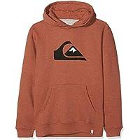 Quiksilver Big Logo Sudadera, Niños, Rojo (Barn Red Heather RQJH), (Tamaño del Fabricante:L/14) - Cosmética y perfumes - Comparador de precios