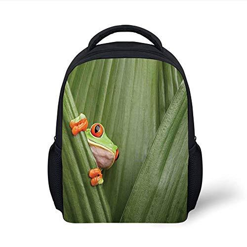 Kids School Backpack Animal Decor,Red Eyed Tree Frog Crowling Between Leaves Tropical Jungle Rainforest Night Art,Green Plain Bookbag Travel Daypack -