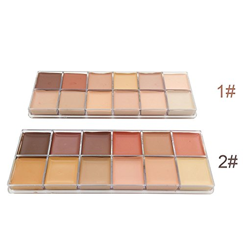 tanali-12-colors-pro-contour-highlighter-earth-concealer-palette-makeup-2