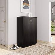 Amazon Brand - Solimo Aquilla Engineered Wood Storage Unit with Swing Doors (Wenge Finish)