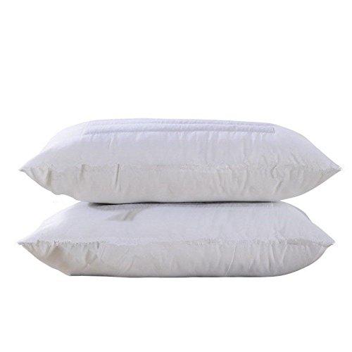 2pcs-bio-grano-saraceno-cassia-pro-e-contro-doppio-uso-cuscino-73-45-cm-buckwheat-dual-purpose