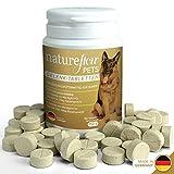 Gelenktabletten für Hunde - Hohe Akzeptanz beim Hund da keine Kapseln - Ergänzungsfutter mit Grünlippmuschel, MSM und Teufelskralle - 100 Tabletten für bis zu 6 Monate - In Deutschland hergestellt