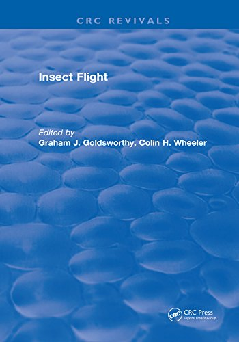 Insect Flight (English Edition)