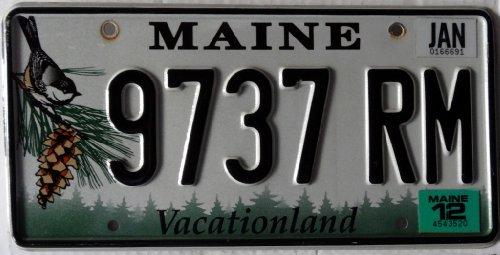 US Nummernschild MAINE Kennzeichen # USA Schild VOGEL Motiv # Blechschild