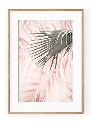 Póster Enmarcado Pink Palm-Marco 30x 40cm