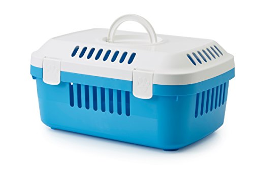 Transportbox Discovery Compact blau 48,5 x 33 x 23,5cm