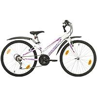 Multibrand, PROBIKE ADVENTURE, 24 Zoll, 290mm, Mountainbike, 18 gang, Schutzblech-Set, Für Damen, Kinder, Junioren