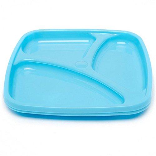 BOYZ TOYS pique-nique Divider Plate Pack 2, Bleu, Taille Unique