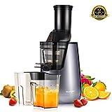 TILUXURY Slow Juicer,250w Wide Chute Masticating Juicer High Juice Yield Cold Pressing Juicer