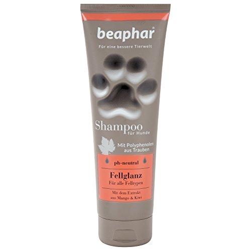 Beaphar Premium Lucida Lucidante per Cani | Cani Shampoo per Shampoo Pelliccia Pelliccia | Profumo di Mango & Kiwi | Contro Cattivi odori | PH Neutro | 250ML