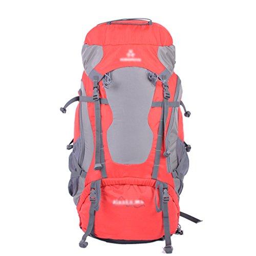 HWLXBB Outdoor Bergsteigen Tasche Männer und Frauen 65L Wasserdichte Mehrzweck-Bergsteigen Tasche Wandern Camping Bergsteigen Freizeit Rucksack Rucksack A