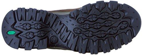 Timberland Monte Maddsen Hiker Boot Brown