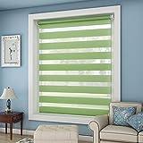 OUBO Doppelrollo Klemmfix ohne Bohren 55x 150 cm (BxH) Grün Fenster Duo Rollo - lichtdurchlässig und verdunkelnd Wandmontage Deckenmotage Sichtschutz Rollo mit Klemmträgern