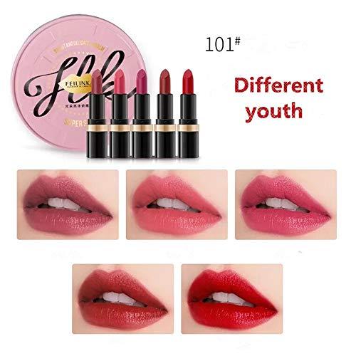 Lápiz labial mate Lápiz labial hidratante resistente al agua Set 5 barras de labios de colores