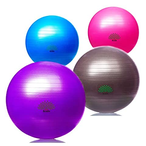 Sosila Anti-Burst Gymnastikball, Yogaball, Pilatesball, Fitnessball, Sitzball mit Pumpe, rutschfest, berstsicher von 65cm und 75cm, 150kg Maximalbelastbarkeit, Pezziball Swissball als Fitness Kleingeräte und Balance Stuhl, ideal für Rehasport, Balanceübungen, Koordinationsübungen, Schwarz, Lila, Pink und Blau (Schwarz, (175 Sitz)