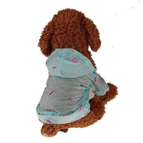frgtrhb Hundekleidung für den Sommer, Sonnenschutzkleidung für Hunde und Haustiere, Sonnenschutz, Kostüm, Kleidung für Chihuahua, Pudel, - Pariser Mädchen Kostüm