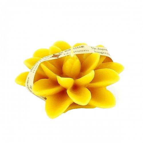 monastere-de-bois-salair-bougie-flottante-fleur-de-lotus-n4-a-la-cire-d-abeille-100-naturelle