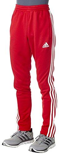 adidas Herren T16 Team Hose, Rot/Weiß, XL