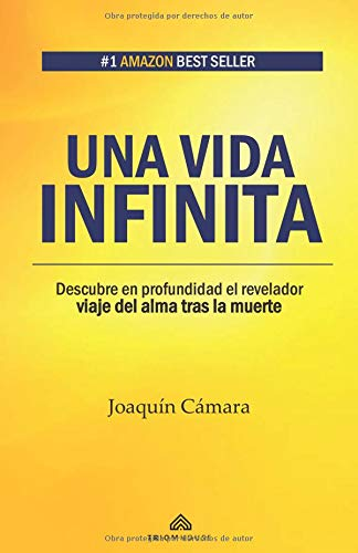 Una vida infinita: Descubre en profundidad el revelador viaje del alma tras la muerte par Joaquín Cámara
