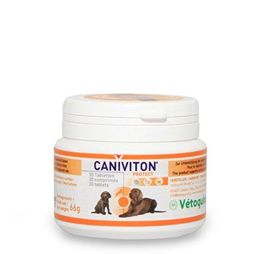 Nur Eine 30 Tabletten (Vetoquinol CANIVITON protect 30 Tabletten)