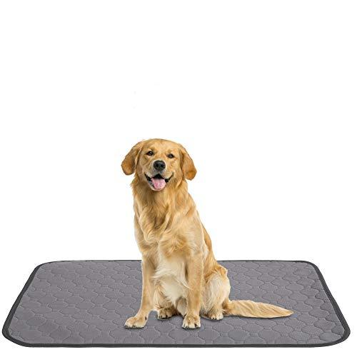 Pssopp Cuscino per pipì per Animali Domestici Cuscinetti per pipì Lavabili per Cani Cuscinetti per addestramento per Cuccioli riutilizzabili Cuscinetti per Cuccioli Impermeabili Tappetino(M-Grigio)