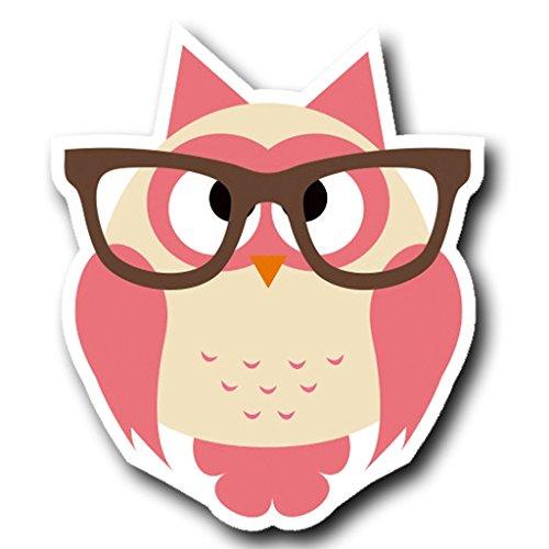2 x 25cm/250mm Geek Eule Brille Rosa Vinyl SELBSTKLEBENDE STICKER Aufkleber Laptop reisen Gepäckwagen iPad Zeichen Spaß #4024