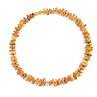 amberdog natural amber necklace for dog ticks? Tick protection?