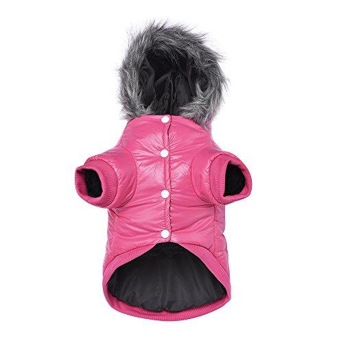 Namsan Pet Puppy Dog wasserfeste Kleidung und Winddichte Kapuzen Winter warme Kleidung Mantel Outwear -Pink -Kleine - 2
