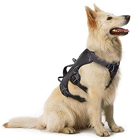 rabbitgoo No Pull Hundegeschirr mit Tragegriff Mittelgroße Hunde Verstellbar Reflektierend Hundeweste Gepolstert…