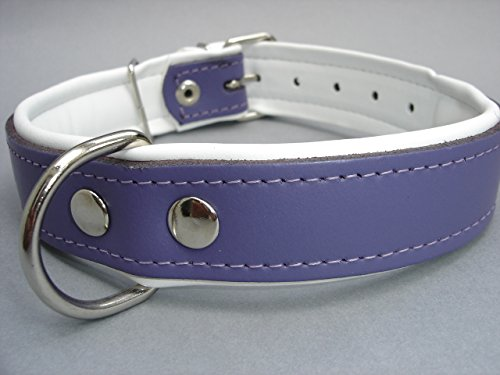 LEDER HALSBAND - Hundehalsband, Halsumfang 51-62cm/35mm NEU Violett