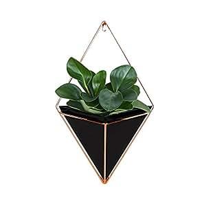 fastar zimmerpflanzenhalter zimmerpflanzgef zur wandmontage f r b ro deko h ngegarten. Black Bedroom Furniture Sets. Home Design Ideas