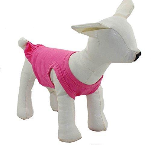 dung Klein Hund Kleidung Blanko Sport Kleid T-Shirts Tee Kleider Tanks Top für Kleine Größe Weiblich Hunde Sommer Spring Pet Kostüme 100% Baumwolle (Bilder Von Haustiere In Kostüme)