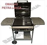 Barbecue a gas PROFESSIONALE con funzioni Grill BRUCIATORI IN GHISA e Piastra - 2 bruciatori - 11.2...