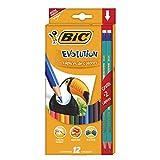 BIC Kids 9078322 ECOlutions Evolution Buntstifte Set für Kinder ab 5 Jahren – Farbstifte ohne Holz, mit bruchsicherer Mine - sicher Schreiben – 12 Stifte im Kartonetui