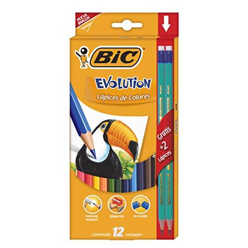 BIC Kids Evolution ECOlutions Crayons de Couleur - Etui Carton de 12