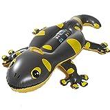 Unbekannt Gecko Rider Wasser Reittier Spielzeug, Matratze mit Griff, 2 Luftkammern 160cm