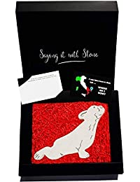 Upward Facing Yoga Dog - Contains Fossil Fragments - Symbol of Friendship, Protection, Loyalty, Unconditional Love & Devotion - Gift Box & Blank Message Card Incl - Pilates Meditation Yogi Best Friend