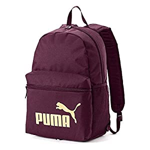 41fmpIVQEqL. SS300  - PUMA Phase Backpack Mochilla, Unisex Adulto