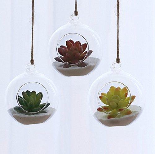 3Stück Blumentopf zum Aufhängen, Glas Air Blumentöpfe Air Pflanze Terrarien Aufhängen Pflanze zum Aufhängen Kerzenhaltern Aufhängen Gefäßen Air Pflanze-Halter