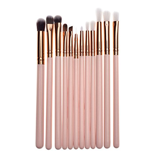 DaySing Brosse Kit De Pinceau Maquillage Professionnel 12Pcs Maquillage Base Sourcils Eyeliner Blush Pinceaux CosméTique Anticernes Pinceau à LèVre avec Sac Nois