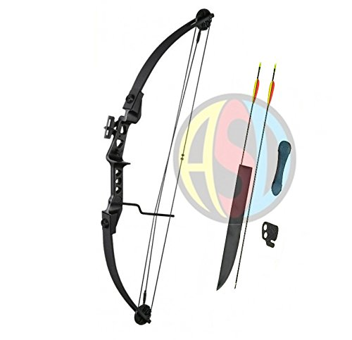 asd-archery-black-striker-compound-bow-and-arrows-set-fully-adjustable