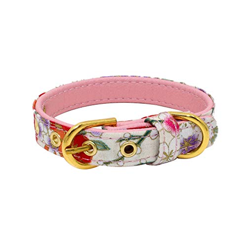 Danigrefinb Halsband für Hunde und Katzen, mit Verstellbarer Schnalle, in 4 Farben erhältlich