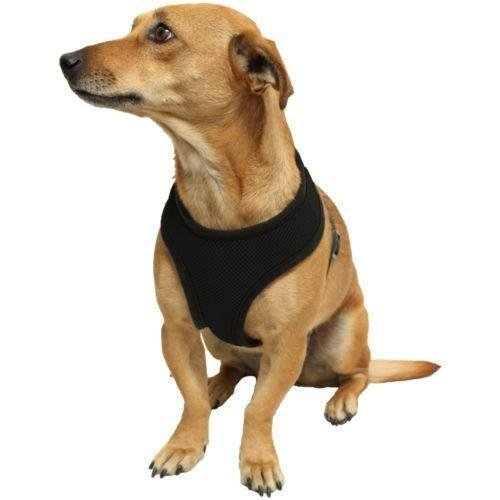 Ducomi Snoopy Pettorina Regolabile e Confortevole per Cani e Cuccioli (XS, Black)