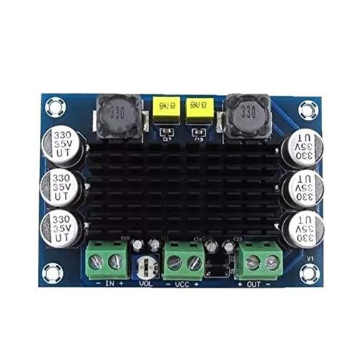 ghfcffdghrdshdfh Professional Small Size DC 12V 24V 100W TPA3116 D2 DA Mono Single Channel -