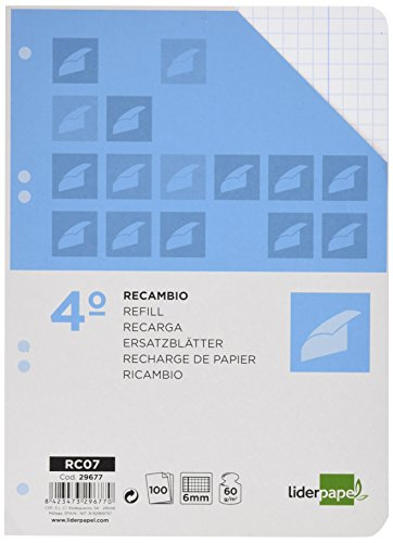 spare-liderpapel-quarter-100-sheets-60-g-m2-table-6-mm-with-margin-6-holes
